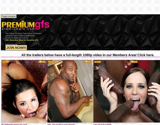 premium gfs premiumgfs.com