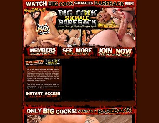 in.bigcockshemalebareback.com